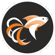 akvarijni ryby zooshop