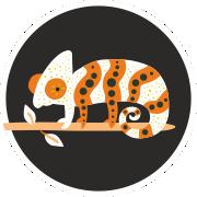 terarijní zvířata zooshop xxl